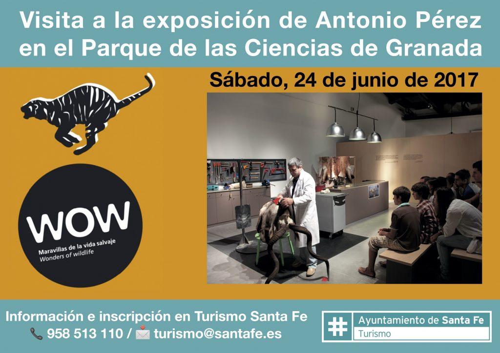 Visita exposición WOW